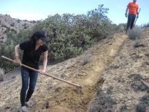 Trail Making