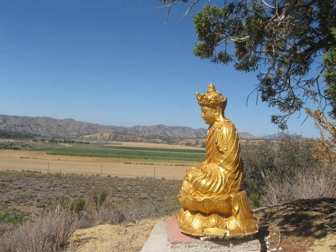 pine mountain valley buddhist personals 5 reviews of pine mountain buddhist temple & meditation retreat i'd 100% recommend coming here if you're willing to be buddhist.